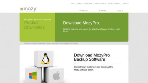MozyPro NAS online Backup